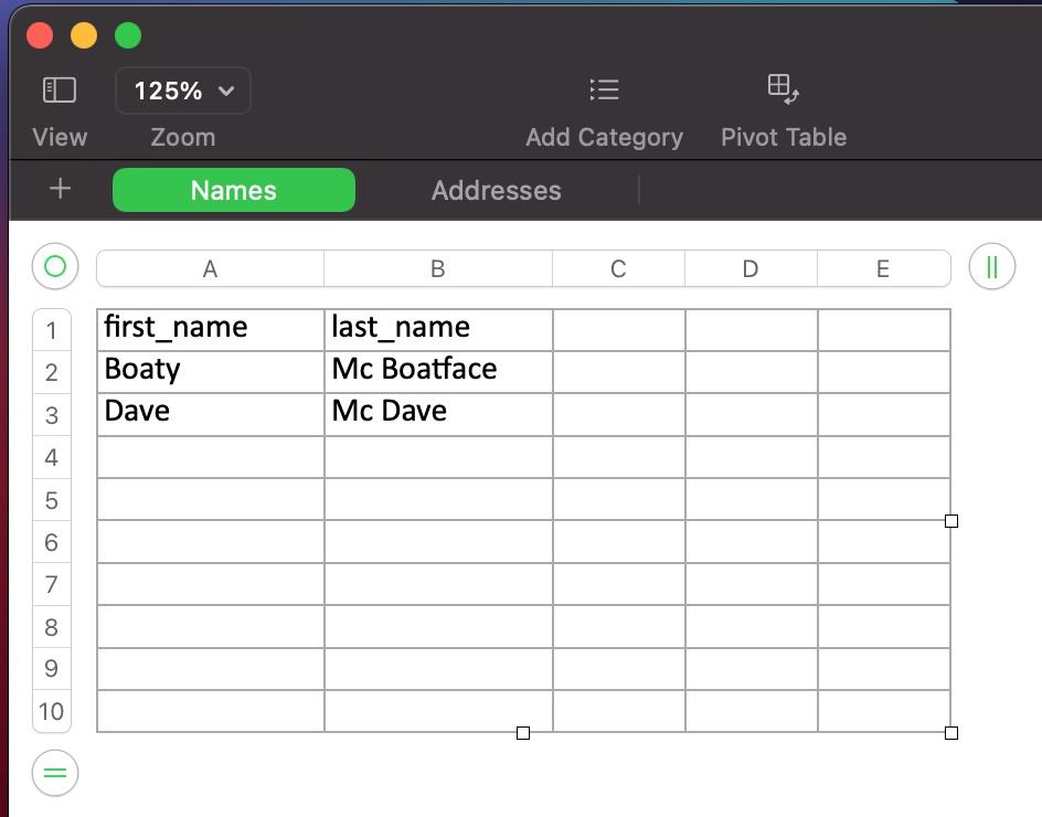 The Names Excel worksheet